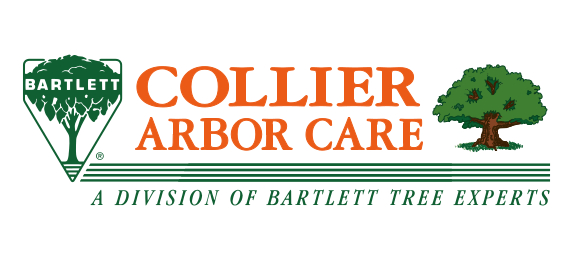Collier Bartlett combined logo - final